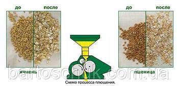 Зерноплющилки , фото 2