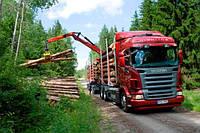 Автомобильная перевозка леса и бревен, транспортировка леса