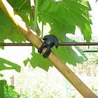 Підвязка /подвязка для винограду якорна з гуми, 10см