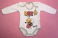 Боди — Велюр 62-86, Пчелка