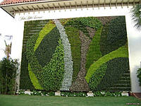 Живые стены Патрика Бланка
