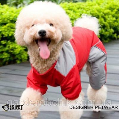 """Комбинезон теплый """"Спорт""""  IS PET. Одежда для собак."""