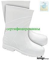 Сапоги утепленные резиновые (рабочая обувь) BLWELLINGTON_K W