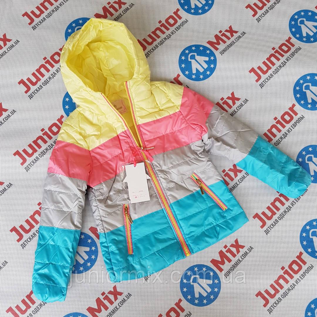 Підліткова кольорова весняна куртка для дівчаток оптом HAPPI HOUSE