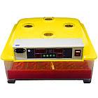 Инкубатор автоматический  MS-36/144
