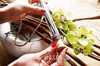 Ваниль Премиум, 3 стручка (16-17 см) в стеклянной колбе с короком