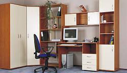 Пенал, книжные полки, компьютерный стол, шкаф.
