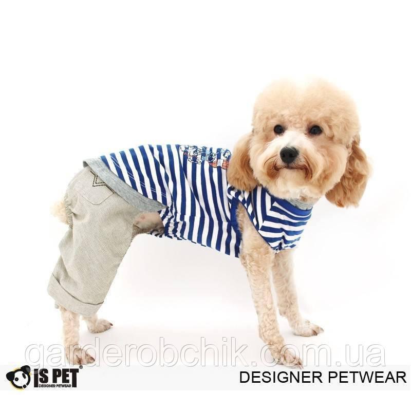 """Комбинезон, костюм  с футболкой """"Юнга"""" для собаки. Одежда для собаки"""