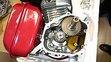 Двигатель бензиновый c редуктором WEIMA WM170F-3(R) NEW (7 л.с., шпонка, шестеренчатый редуктор), фото 3