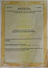 Регистрацинонные документы компании