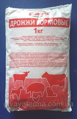 Дрожжи кормовые Протеин 39%, для животных и птиц, фото 2
