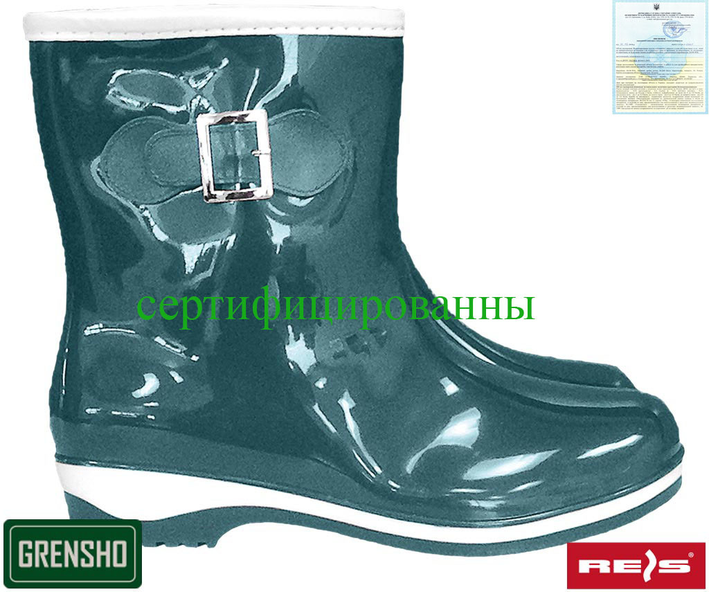 Обувь из ПВХ Польша (резиновые сапоги) BTDKMORNING ZW