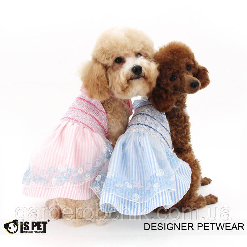"""Платье """"Флора """" для собаки, кошки IS PET. Одежда для собак."""