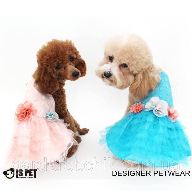 """Платье """"Цветочная поляна """" для собаки, кошки IS PET. Одежда для собак."""