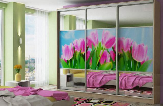 Шкаф-купе 3-ех дверный (комбинированные фасады зеркало+фотопечать)