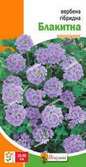 Вербена гібридна Блакитна 0,1 г, насіння Яскрава, фото 2