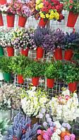 Букеты цветов, зелень, ветки оптом