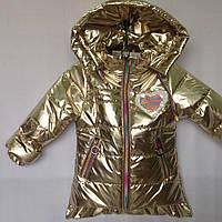 """Куртка детская демисезонная """"Popular"""" для девочек. 1-5 лет (86-110 см). Светлое золото. Оптом., фото 1"""