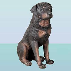 Велика оригінальна скарбничка фігурка Ротвейлер