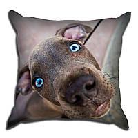 Декоративная подушка Собака удивляка 40х40см