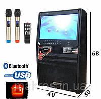 "Мобильная акустика Temeisheng A15-30 12""экран"