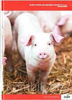 ДМВ для відгодівлі свиней PRIME стартер 4%