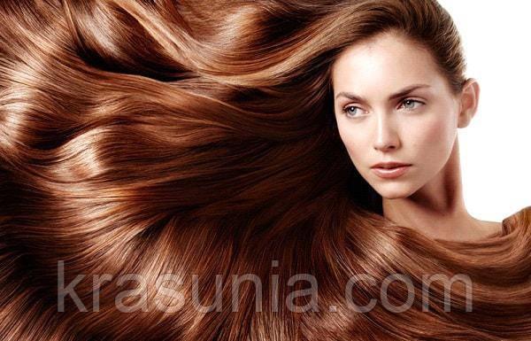 Волосы – показатель здоровья волос