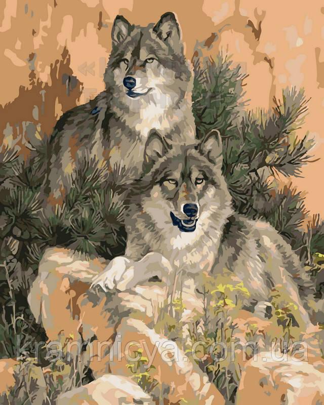 Картина по номерам Пара волков, 40х50 (AS0061)