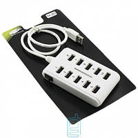 USB Hub H-20 10 PORT 0.6m additional power white