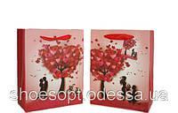 Подарочные пакеты День Валентина 23х18х9 см, фото 1