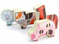 Магнитные фигуры Ферма, Мир деревянных игрушек (Д004), фото 1
