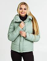 Куртка осень-весна DKU1 - мята, фото 1