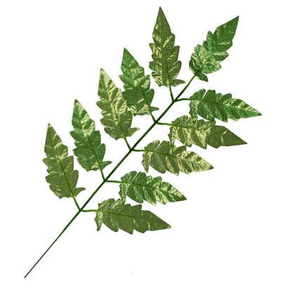 Листья и добавки