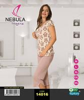 NEBULA Футболка+капри 14016