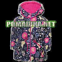 Детская весенняя осенняя куртка р. 80, 86 для девочки с капюшоном подкладка 100% хлопок 4006 Малиновый