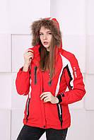 Женская горнолыжная куртка  B-Blesings S,M,L,XL,2XL