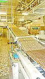 Бо лінії для виробництва бісквітного печива 200-300 кг/год Lu, фото 4