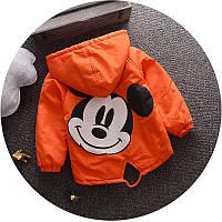 Куртка Микки молния не утепл (оранж) 120