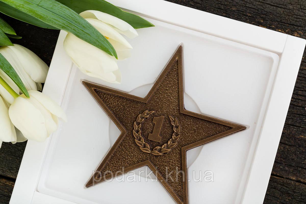 "Шоколадная звезда ""Защитнику"""