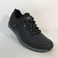 """Мужские кожаные кроссовки """"Ecco"""" / темно-синие"""