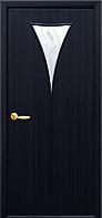 Дверное полотно Бора со стеклом сатин и рисунком (Венге DeWild / Экошпон)