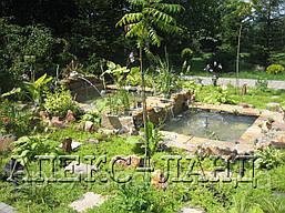 Стоительство декоративных водоемов. Цена с учетом материалов и оборудования:
