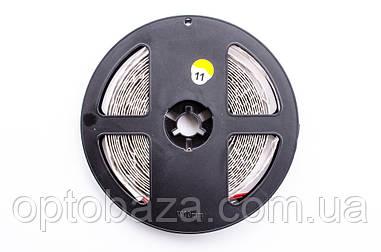 LED лента теплая белая SMD 3014 240д/м (5 м) негерметичная