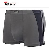Мужские боксеры стрейчевые марка «INDENA»  Арт.55004N, фото 2