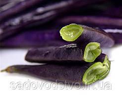 Китайскаские фиолетовые бобы