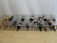 Стелаж для вина горизонтальный (арт. MS-PVK-056), фото 1