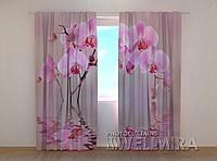 """Фото штора """"Лилейная орхидея"""" 250 х 260 см"""