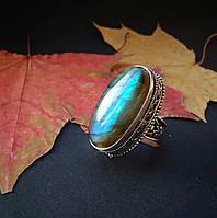 Кольцо с лабрадором в серебре размер 17,75