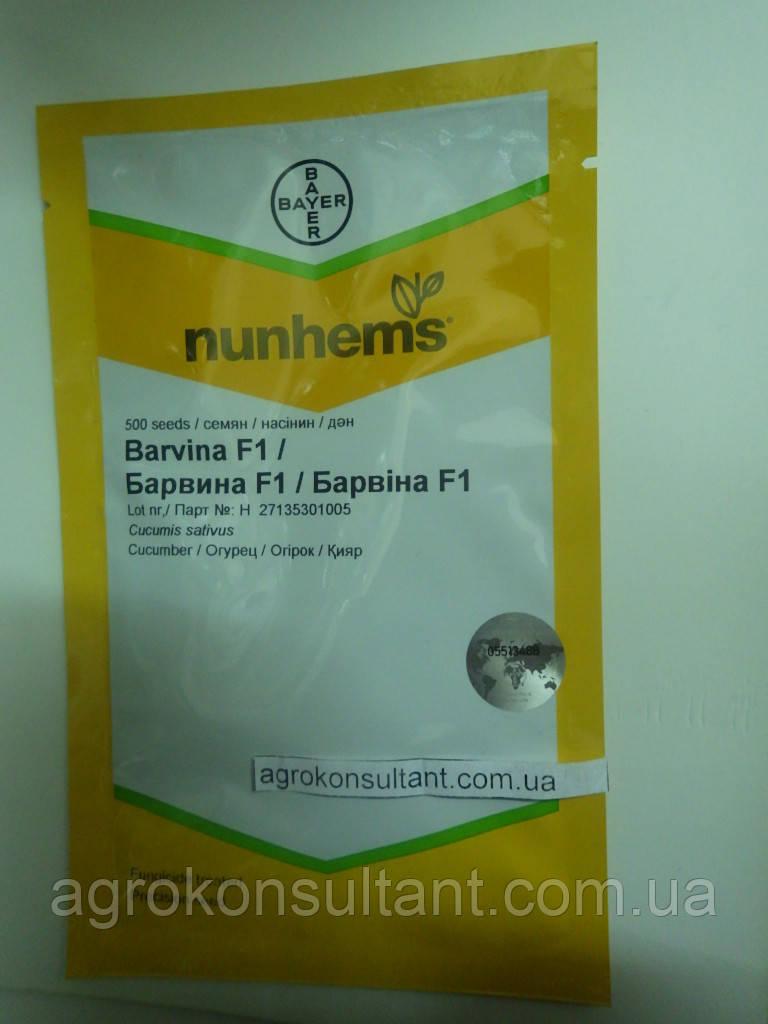 Семена огурца Барвина F1 (Nunhems) 500 семян — партенокарпик, ранний гибрид (40-45 дней)