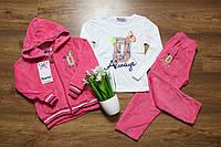 Детский спортивный розовый костюм на девочку велюровый,тройка,кофта +костюм,Новинка 2018 р.98-128см